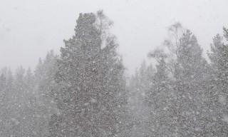 Kategorie Winter · Nordwärts