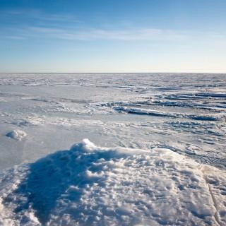 Eis fast bis zum Horizont …