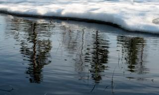 Viele Bäche und Sumpfflächen sind schon offen