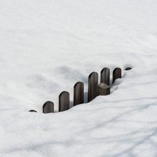 Der Zaun hinten lugt aus dem Schnee