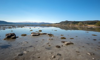 Fjordbucht