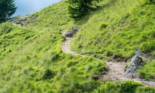 Weg über die Bergalm