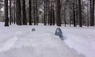 Mit Skiern im Wald
