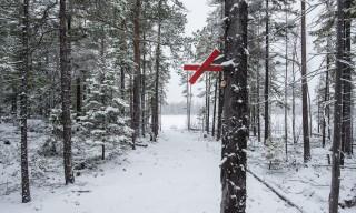 Winterweg zum See Rudtjärnen