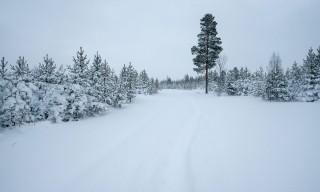Die Strasse zur Berghütte