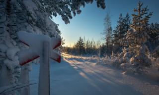 Winterwegmarkierung