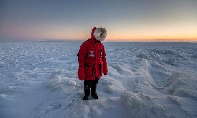 Canada Goose –ein Traum für Winterfotografen
