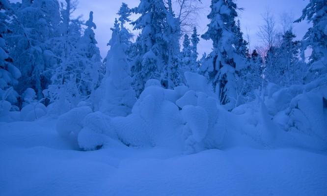 Schneeummantelt