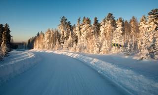 Die Straße von Burvik nach Bureå
