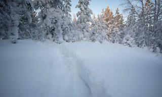 Tiefe Schneeschuhspur