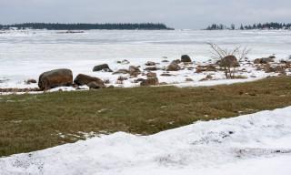 Schneeschmelze an der Ostsee