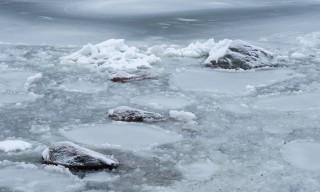 Schnee und Eis auf der Bucht