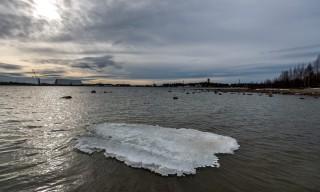 Der Kallholmsfjärden ist fast eisfrei