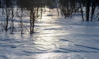 Harschiger Schnee