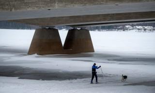 Mit Hund und Ski unter der Betonbrücke