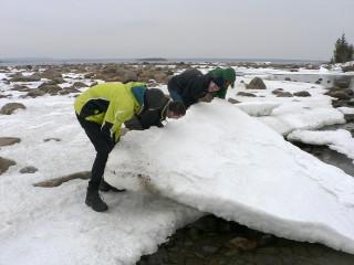 Wie schwer ist wohl diese Eisscholle?