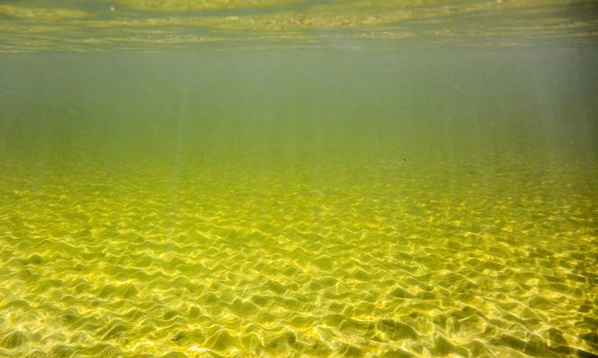 Meeresboden