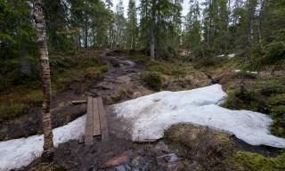 Holzsteg auf dem Hinweg