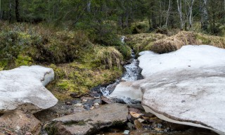Altes Eis am Bach auf dem Rückweg