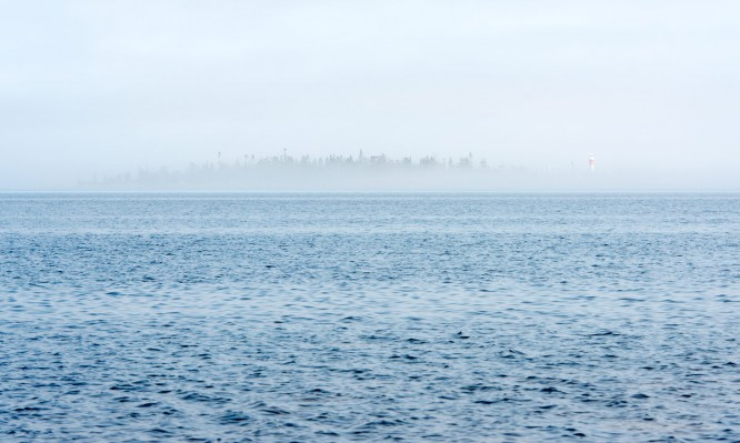 Gåsören im flachen Nebel