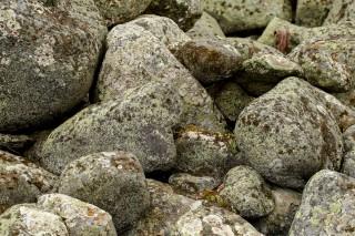 Bjuröklubb: flechtenbewachsene Steine