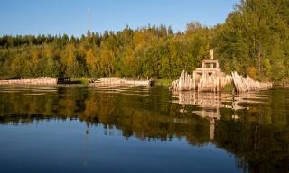Erste Herbstfarben am Ufer