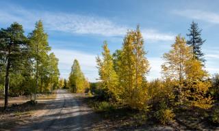 Herbst in Skelleftehamn