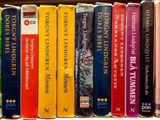 Hörbücher von Torgny Lindgren