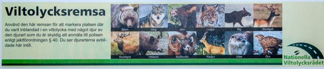 Die meldepflichtigen Tierarten